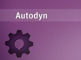 ANSYS Autodyn 1