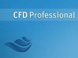 ANSYS CFD Professional 1