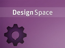 ANSYS DesignSpace 1