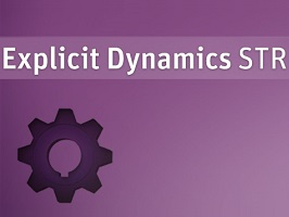 ANSYS Explicit Dynamics STR 1