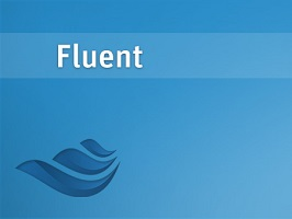 ANSYS Fluent 1