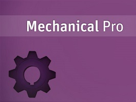 ANSYS Mechanical Professional 1