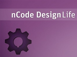 ANSYS nCode DesignLife 1