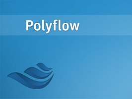 ANSYS Polyflow 1